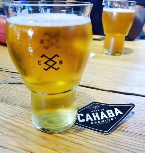Liv On Fifth Birmingham Al: Birmingham Audubon And Cahaba Brewing Launch Goodwill Game