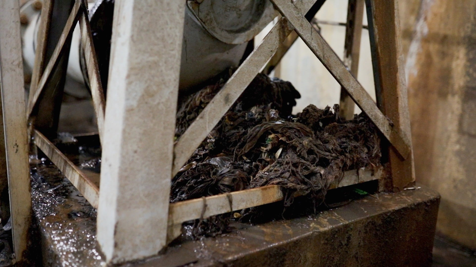 Can't flush this: the hidden culprit that's clogging pipes + could cost you a fortune