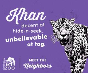 See Khan play tag at the BIrmingham Zoo