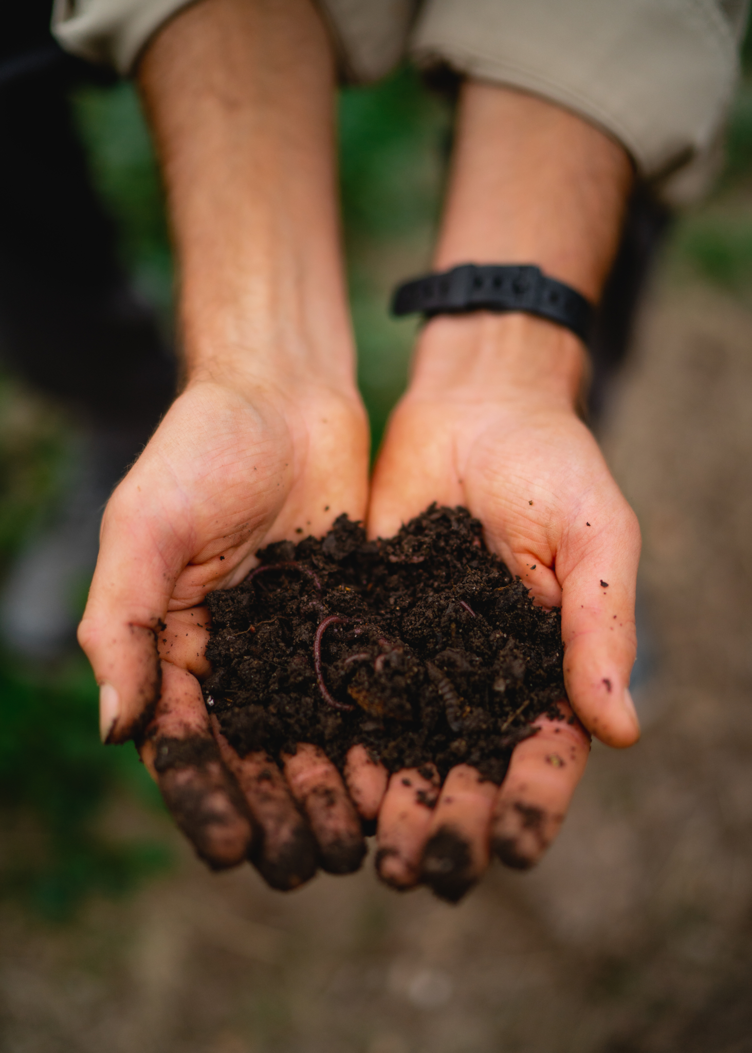 8 Birmingham restaurants that are composting with Field Culture Compost