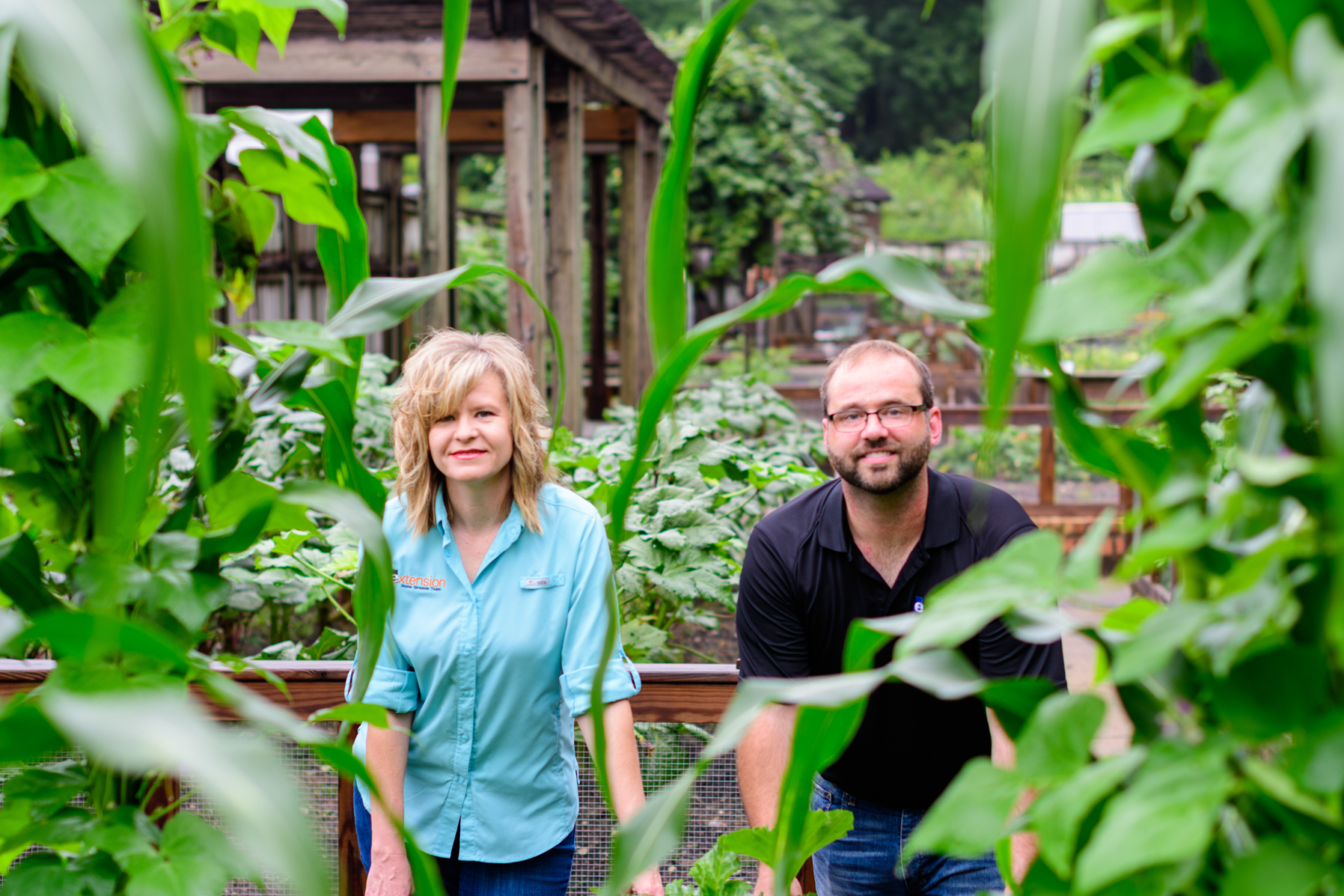 7 steps to start your fall garden now, with help from Alabama Extension