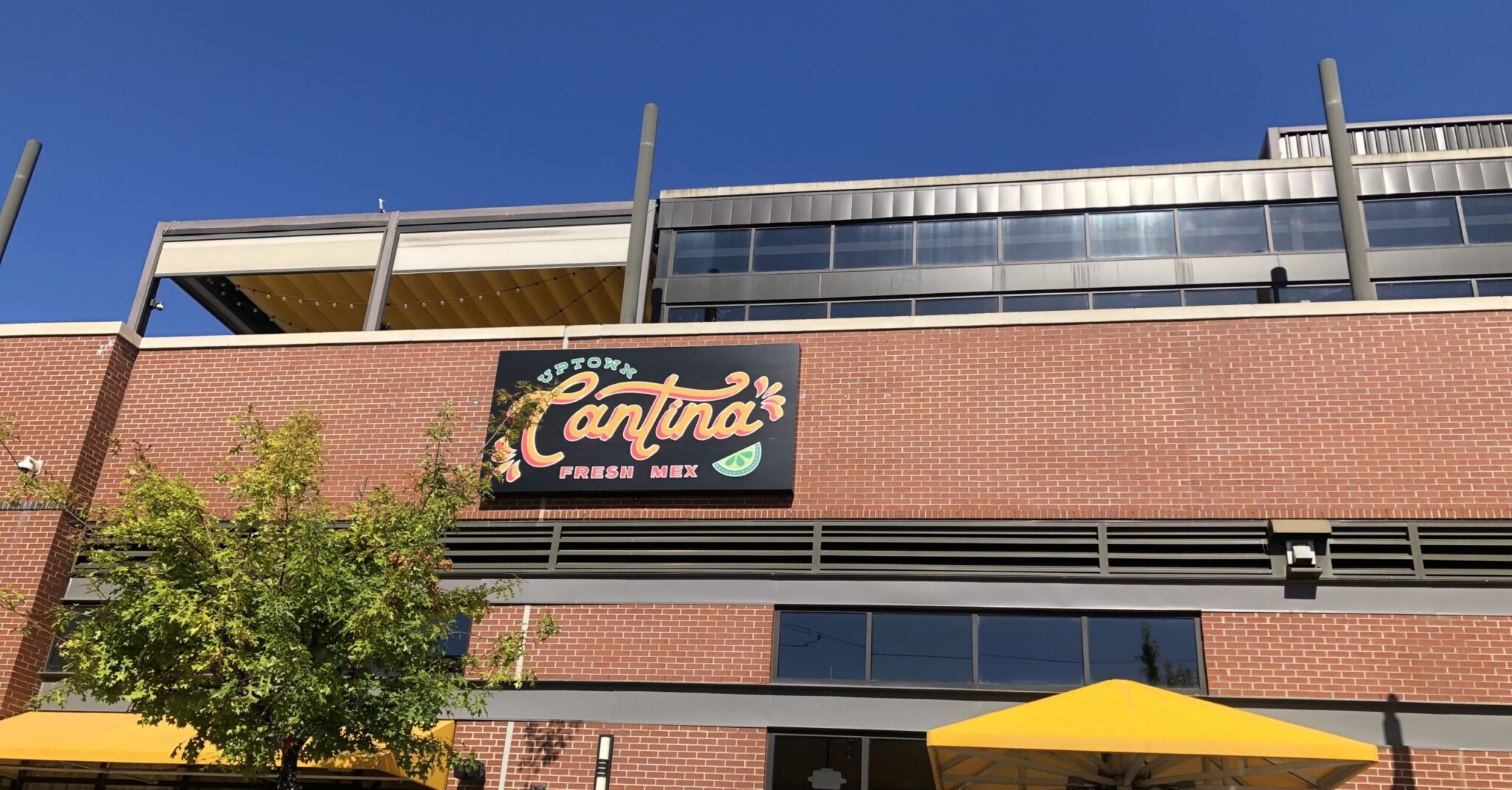 BOCCA, Uptown Cantina, Yo Chef Surf + Turf earn 95+ food service scores